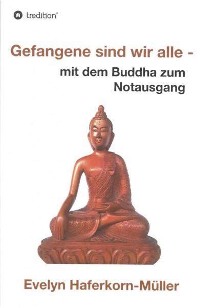 Gefangene sind wir alle: mit dem Buddha zum Notausgang - GEBRAUCHT