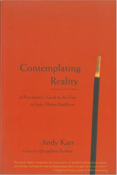 Contemplating Reality: A Practitioner's Guide to the View in Indo-Tibetan Buddhism - GEBRAUCHT